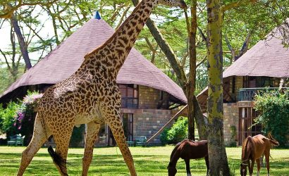 Great Rift Valley Scenery & Masai Mara Expedition Skywide